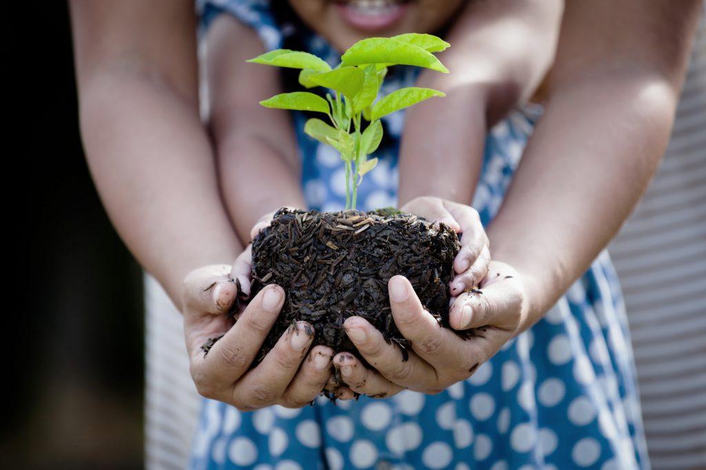 naturkind Magazin - wir spenden Bäume