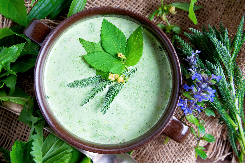 Wildkräuter Suppe Rezept