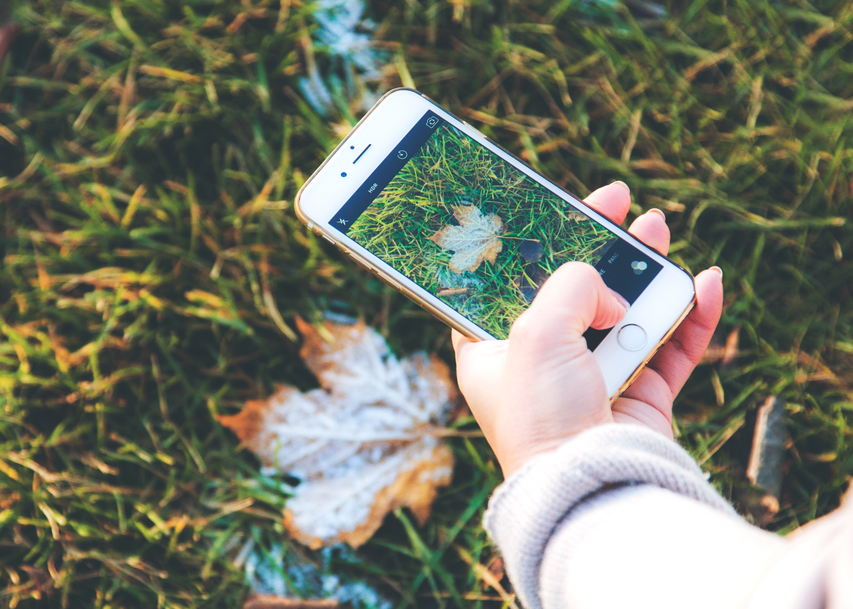 Naturkind Magazin Instagram