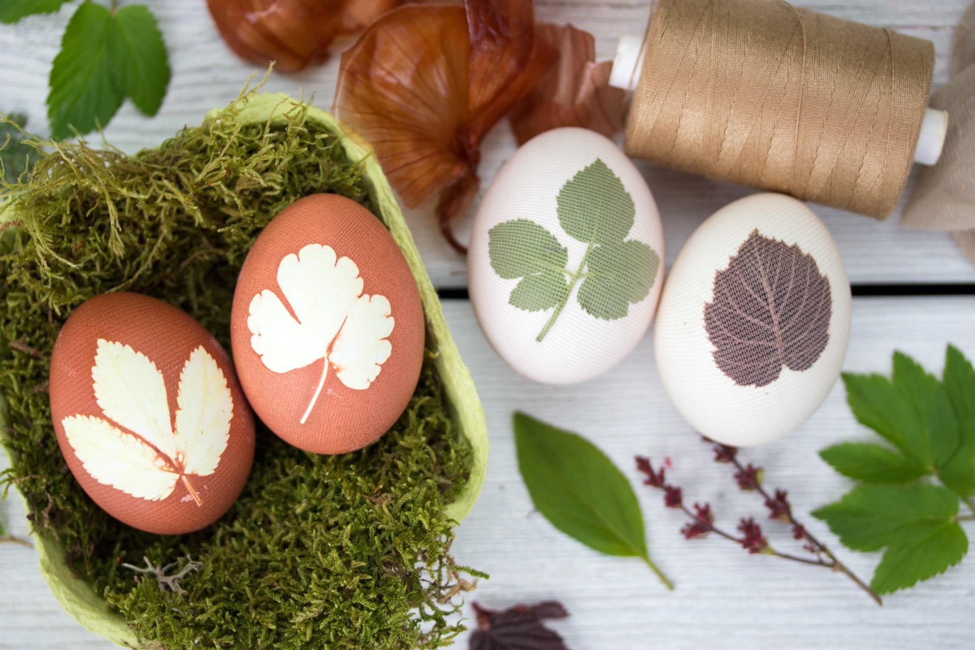 Ostereier natürlich färben Pflanzenfarbe Pflanzenmotive