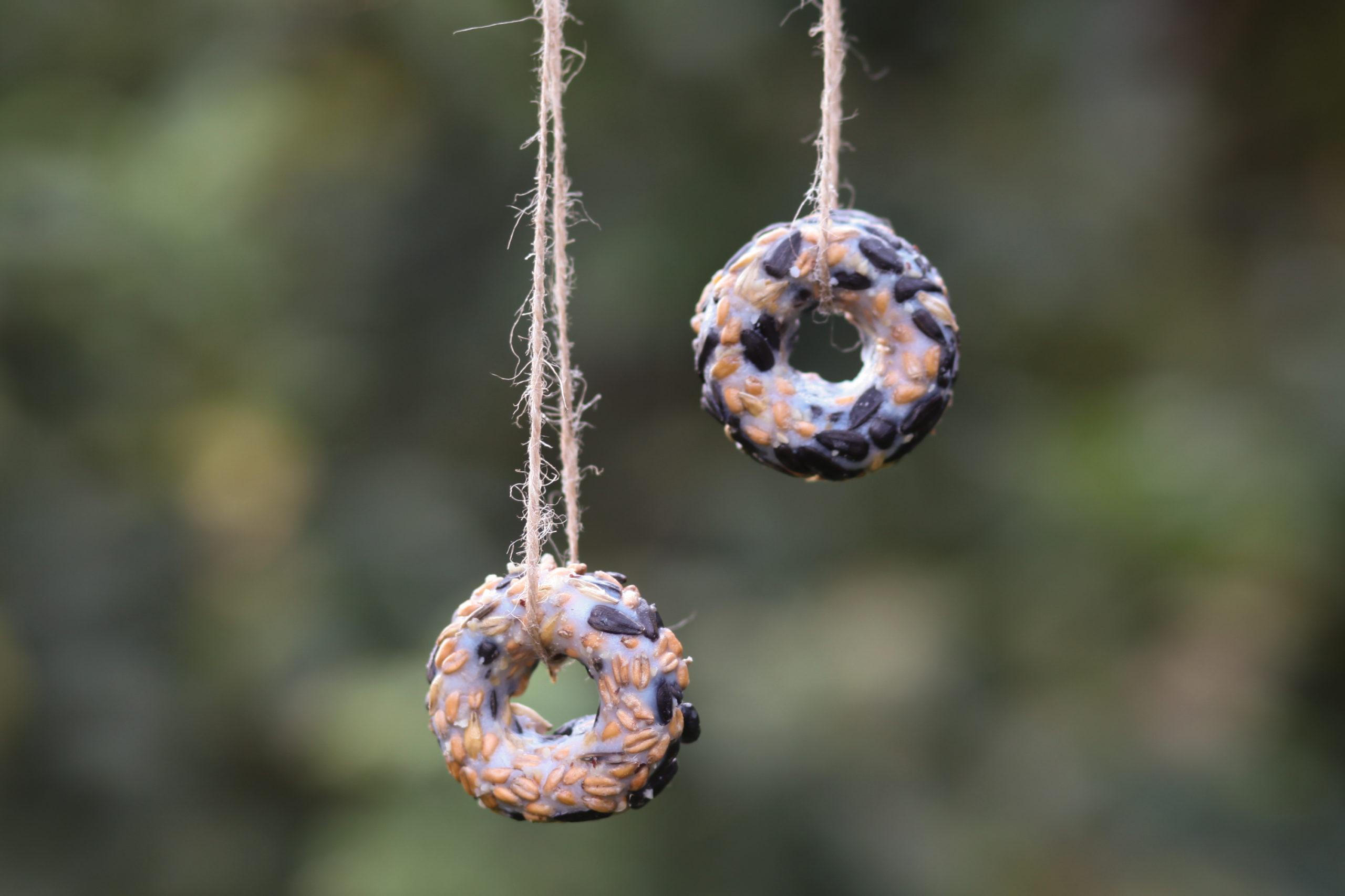 Vogelfutter Donuts
