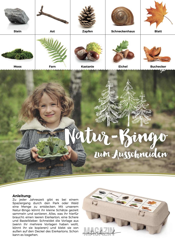 Druckvorlage Naturbingo Natur Bingo